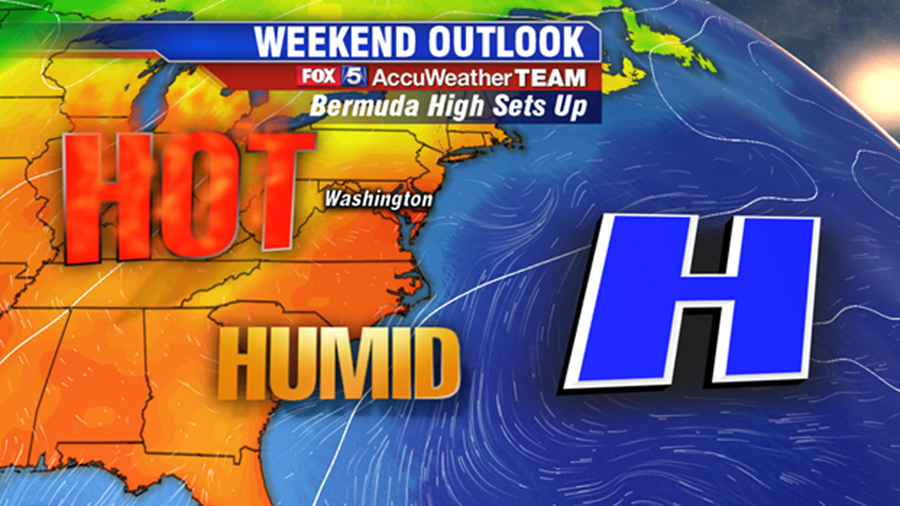 Dog days of summer set in as another heat wave eyes DC region